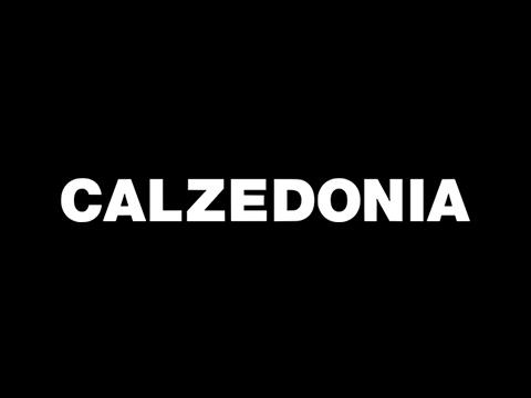cc_arcangel-logos-calzedonia